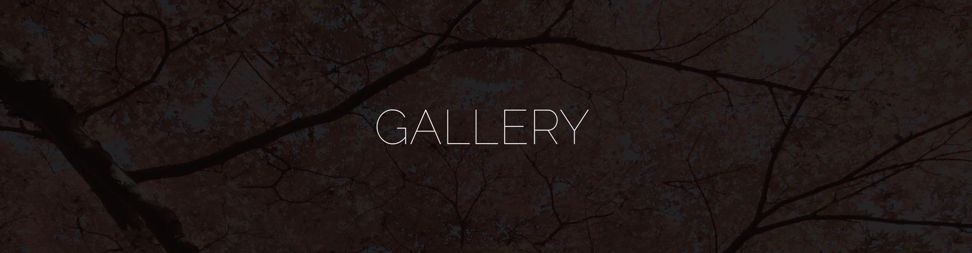 gallery-B.jpg